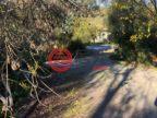 澳大利亚南澳大利亚安格斯顿的土地,39 Moculta Road,编号50389736