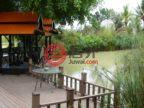泰国佛丕府七岩的商业地产,43 Moo 6, Na Yang,编号52392611