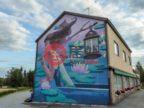 芬兰West and Inner FinlandKuhmoinen的房产,Toritie 41,编号54877234