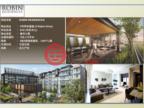 新加坡中星加坡新加坡的房产,中央商业区,编号29137575