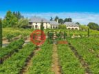 美国加州纳帕的房产,1050 Olive Hill Lane,编号47982240