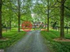 美国马里兰州Highland的房产,13032 HIGHLAND RD,编号49452804