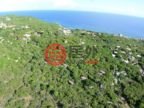 英属维尔京群岛的土地,Spring Bay Land,编号26082657