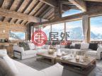 瑞士的房产,编号49332561