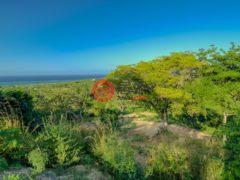 居外网在售洪都拉斯RoatánUSD 85,000总占地1028平方米的土地