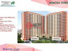 居外网在售菲律宾马尼拉1卧1卫的房产总占地20平方米PHP 2,990,000