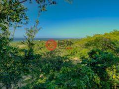 居外网在售洪都拉斯RoatánUSD 65,000总占地1016平方米的土地