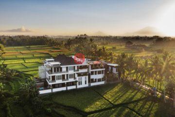 居外网在售印尼GianyarUSD 3,608,125总占地4900平方米的商业地产