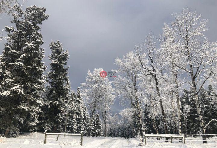 加拿大不列颠哥伦比亚省100 Mile House的土地,Four Hearts Ranch ,编号57697294