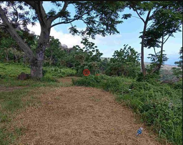 美国夏威夷库拉的农场,11 Kula Pl,编号59754800
